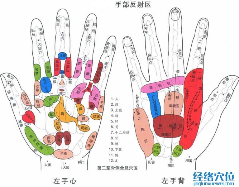 手部穴位图(高清示意图详解)