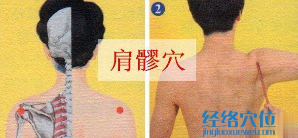 肩髎穴的准确位置图