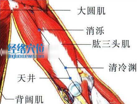 消泺穴的位置图