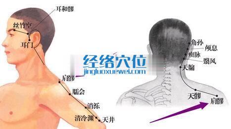 肩髎穴位位置图