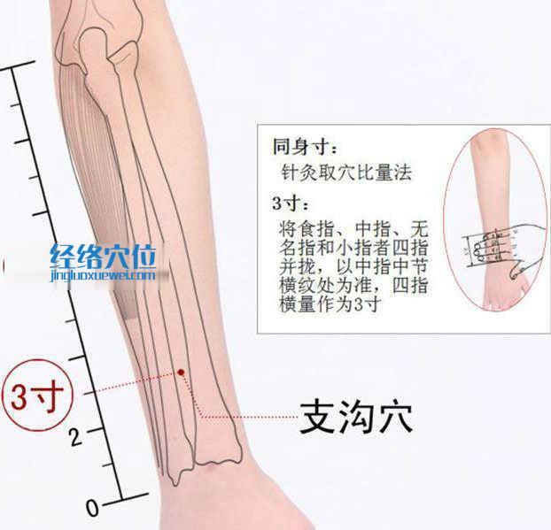 支沟穴的准确位置图及取穴方法示范图片