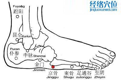 京骨穴的准确位置图