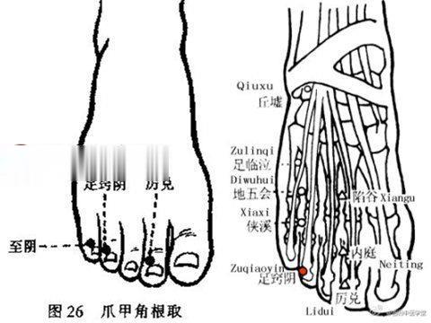 足窍阴穴位位置图