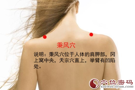 (原创)人体穴位一颈部肩部(12)秉风穴
