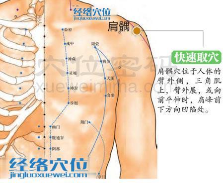 肩髃穴的准确位置图