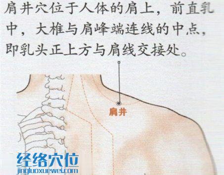 肩井穴的位置图
