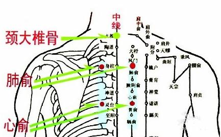 肺俞穴的准确位置图.jpg