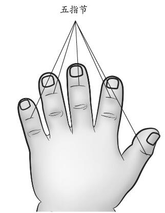 掐揉五指节