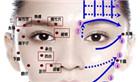 面部穴位图解大全  按摩脸部穴位图 彩图