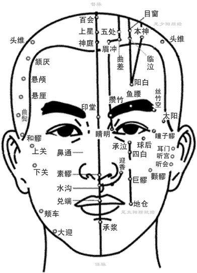 面部穴位图