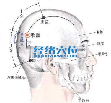承灵穴的位置解剖分析图