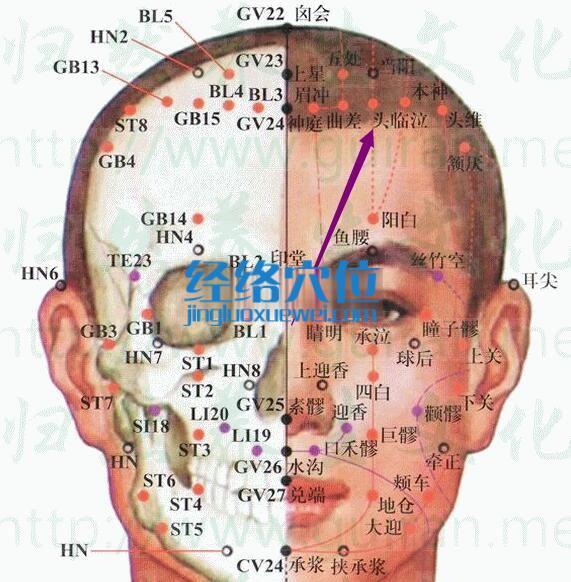 头临泣穴的准确位置图