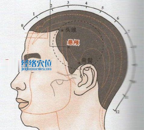 悬颅穴的位置图