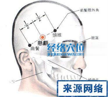 悬颅穴的位置解剖分析图