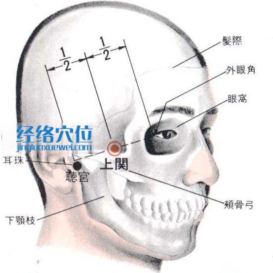 上关穴的位置解剖分析图