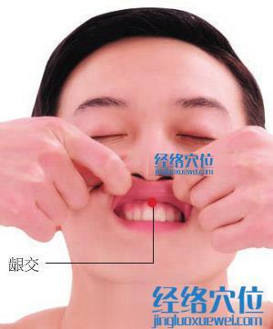 龈交穴位位置图