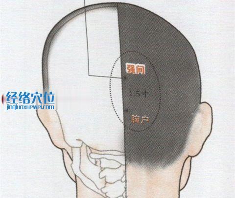 强间穴位位置图