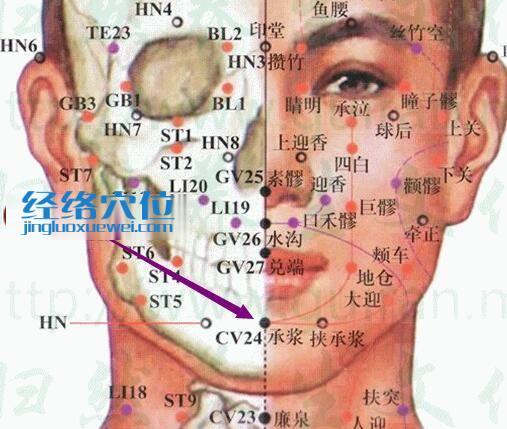 承浆穴的准确位置图