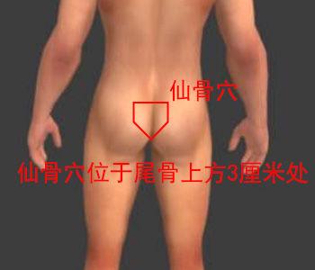 仙骨穴位位置图