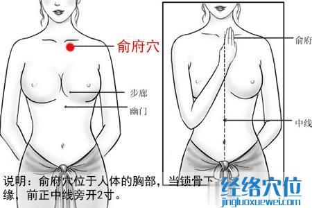 (原创)人体穴位一胸部腹部(2)俞府穴