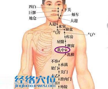 乳中穴位位置图
