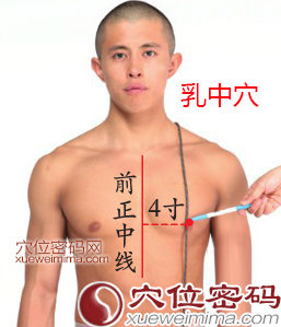 乳中穴的准确位置图