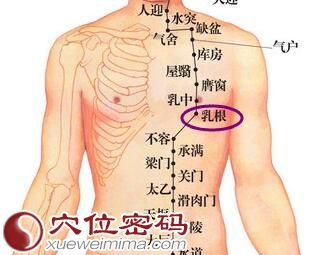 乳根穴位图