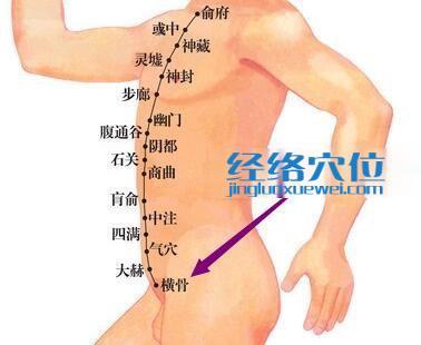 横骨穴位位置图
