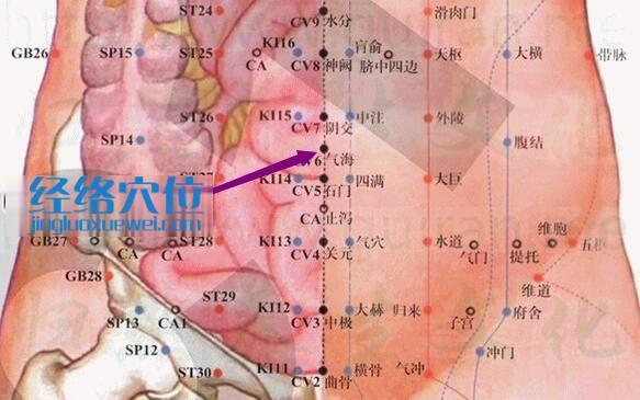 气海穴的准确位置图