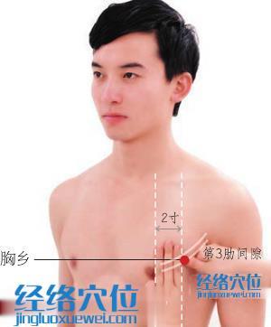 胸乡穴位位置图
