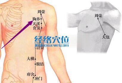 胸乡穴的位置图