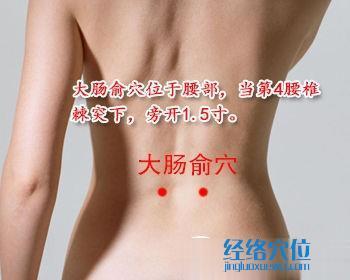大肠俞穴位位置图