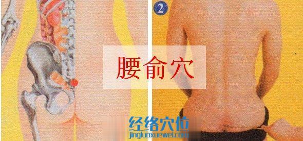 腰俞穴的准确位置图
