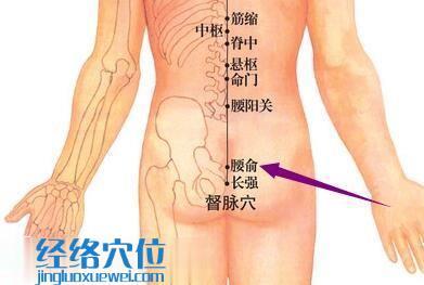 腰俞穴的位置