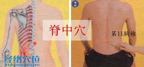 脊中穴的准确位置图
