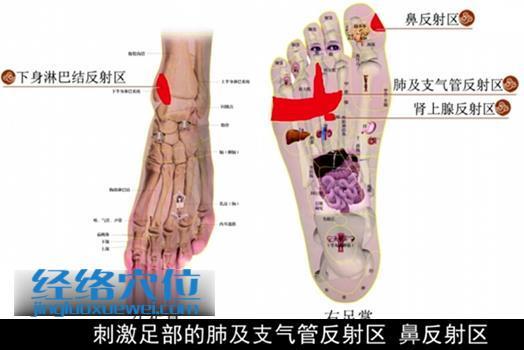 足部理疗法